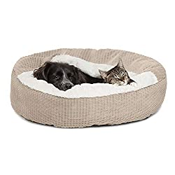 Black dog and cat laying on a Best Friends by Sheri Cozy Coddler donut bed, covered in a blanket.