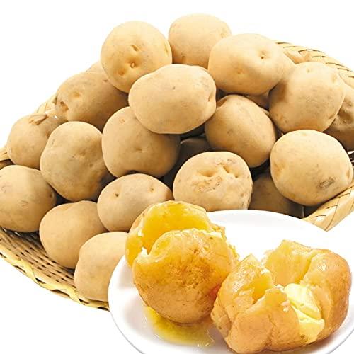 国華園 じゃがいも 北海道産 キタアカリ 20�s 1組 食品