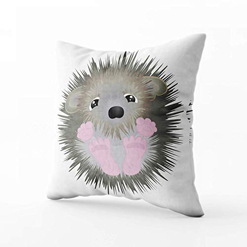 N\A Indoor Outdoor Pillows Covers, Cute Little Hedgehog Square Pillowcase Couch Sofa Inch Throw Cushion Cover