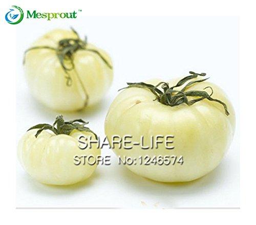 100 graines / Pack, Rare semences de légumes Blanc Tomate Belyy Gigant - White Beefsteak Heirloom Seed