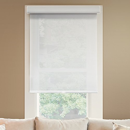 Chicology Deluxe Free-Stop Cordless Roller Shades, No...