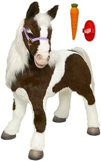 Best smores the pony Reviews