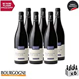Bourgogne Côte d'Or Rouge 2017 - Domaine Cauvard - Vin AOC Rouge de Bourgogne - Cépage Pinot Noir - Lot de 6x75cl - 14.5/20 Bourgogne Aujourd'hui