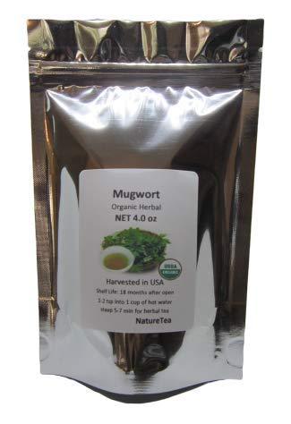 Organic Mugwort - Artemisia vulgaris Loose Leaf by Nature Tea (4 oz)