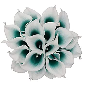 Best teal calla lily Reviews