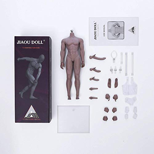 ZSMD 1/6 Scale Super Flexible Seamless Muscular Bodybuilding Male Body, Stainless Steel Skeleton, 12 inches, Swarthy Complexion