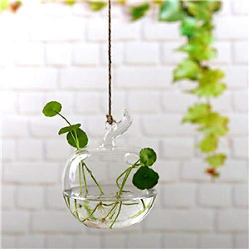 Florero Jardín De Su Casa Transparente Vidrio Transparente Flor Planta Soporte Florero Colgante Maceta Terrario Contenedor Jardín De Casa Decoración De Oficina H