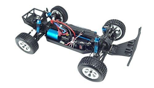 Amewi 22232 Breaker 4WD Brushless 1: 10 Sand Buggy, Mehrfarbig