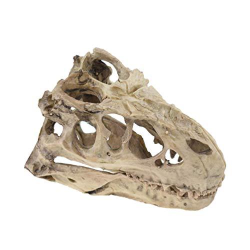 POPETPOP Reptile Cave Resin Dinosaur Skull Decoration Hideout Crawler Toys Snake Climbing Decoration Aquarium Platform Fish Shelter Hide Caves Random Style