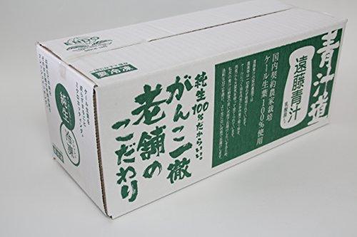 遠藤青汁 無添加国産ケール100%冷凍生タイプ 100g×28袋セット