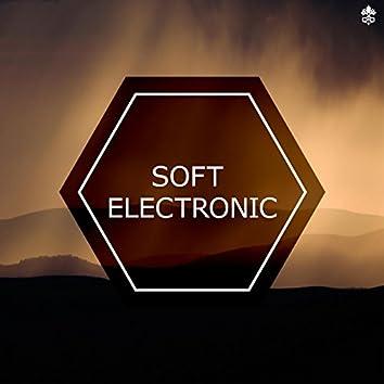 Soft Electronic