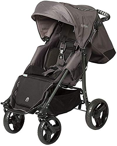 Special Tomato Stroller EIO for Children with Disabilities