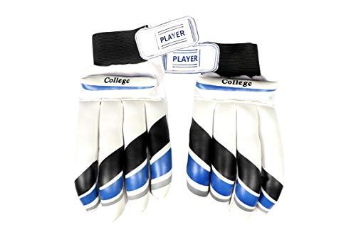 Rai Cricket Player Batting Gloves 'Men' Size (Multicolor of Blue, Black, Gray)