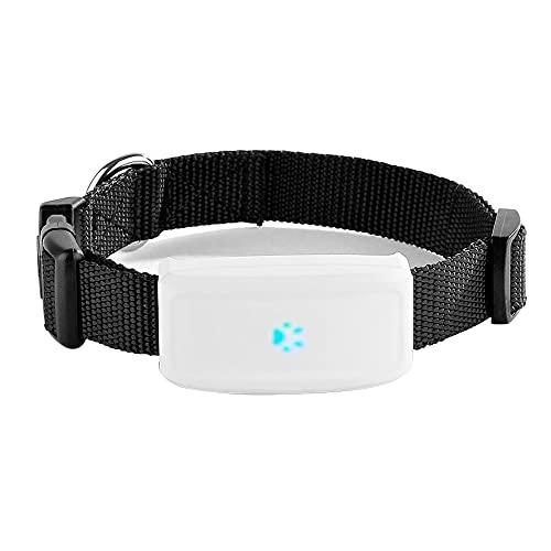 GPS-Tracker für Katzen Kleine Hunde Haustiere mit Halsband Wasserdicht IP66 500mAh Echtzeit-Tracking Kostenlose APP/Plattform Kein ABO