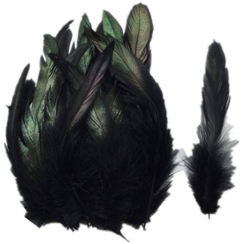 ERGEOB Hahn Feder - Ideen für die Kostüme, Hüte, Home dekor Circa 100 stück 12-18cm schwarz