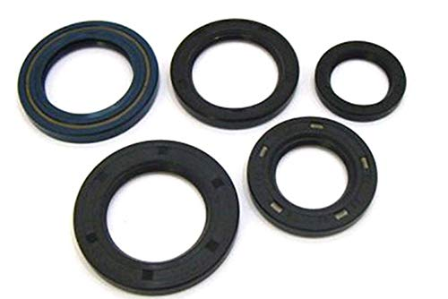 Winderosa 822304 Engine Oil Seal Kit Balance Shaft Oil Seal