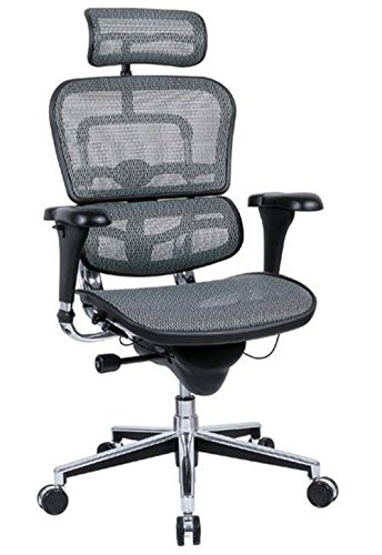 Ergohuman High Back Executive Chair with Headrest, Grey Mesh Seat & Back