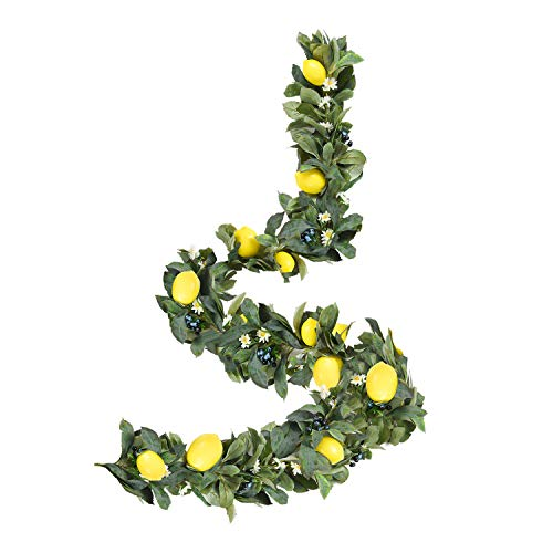 WANNA-CUL 6 Feet/72 Inch Spring Artificial Fruit Garland with Lemon, Blueberry and Green Leaves for Front Door, Wall and Home Decorations