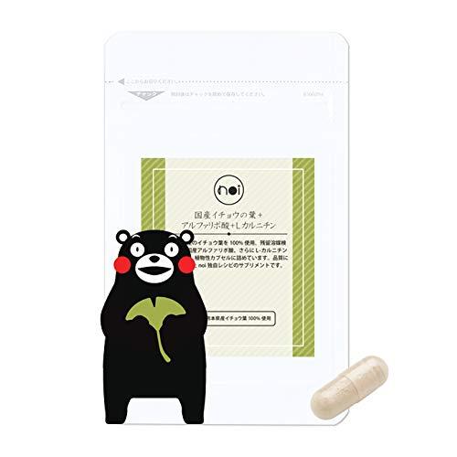 イチョウ葉エキス サプリ noi 国産 イチョウの葉 + αリポ酸 + l-カルニチン 熊本県産100% アルファリポ酸 日本製 無農薬