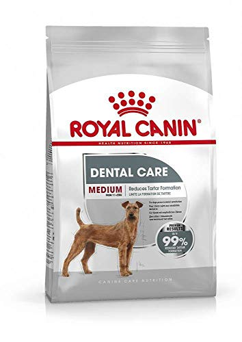 ROYAL CANIN Medium Dental Care - 3 kg