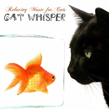 Relaxing Music, Calming Music and Relaxing Sounds for Cats, Pets and All Our Furry Friends