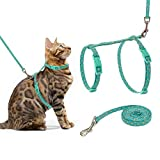Best Harnesses For Cats - SCIROKKO Cat Harness and Leash Set - Escape Review