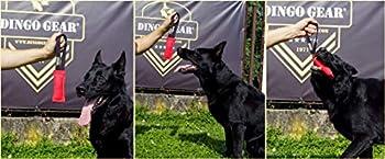 Dingo Gear Tirette pour Chien