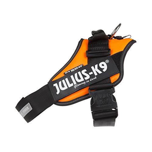 Julius-K9, 16IDC-FOR-1, IDC Powerharness, dog harness, Size: 1, UV Orange