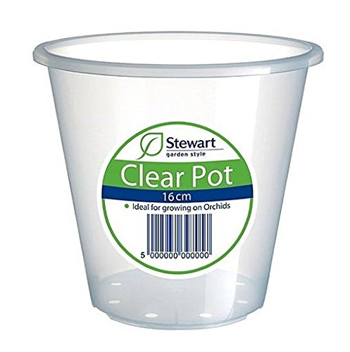 Stewart 2644008, trasparente, 16cm, colore: trasparente