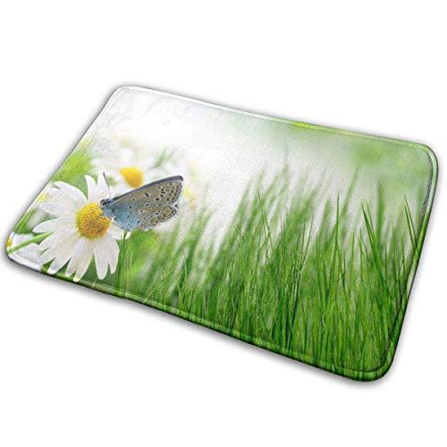 Liuqy Bath Mat Butterfly Green Grass Backdrops Memory Foam Bath Mats Non Slip Soft Absorbent Bath Rugs Rubber Back Runner Mat for Kitchen Bathroom Floors,40x60cm