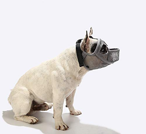 PETEMOO Maulkorb für Hunde mit abgeflachter Schnauze-verstellbar, atmungsaktiv: Englische Bulldogge, Französische Bulldogge, Pekingese, Shih-Tzu, Mops, auch...