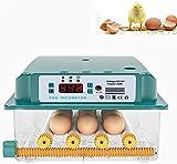 Digital Completamente Automatico incubatore di pollame incubatore di pollame per covata Uova di Pollo quaglia Oca Tacchino, Macchine Uova hatcher, 36 Uova