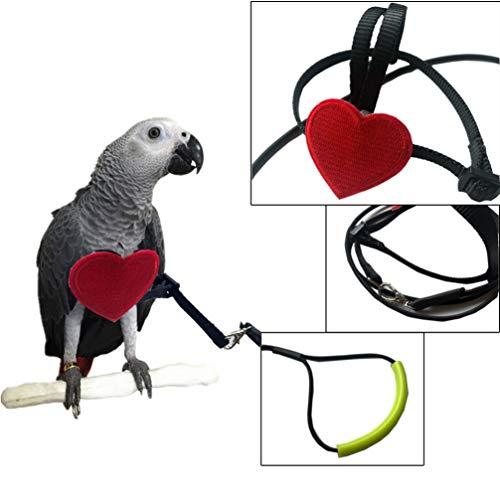 POPETPOP Popop Arnés para pájaros – Correa para Loro Ajustable, Correa para pájaros, Loro, Cuerda de adiestramiento al Aire Libre para pájaros pequeños y medianos – Talla XS