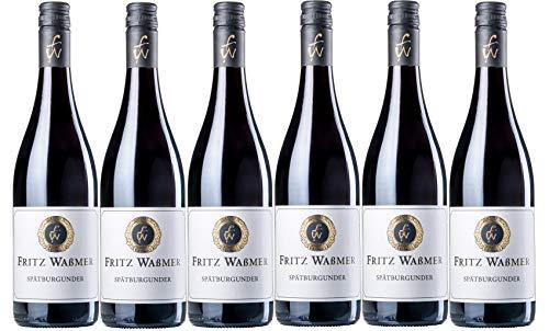 Weingut Fritz Waßmer Spätburgunder Rotwein QW trocken (6 x 0,75L)