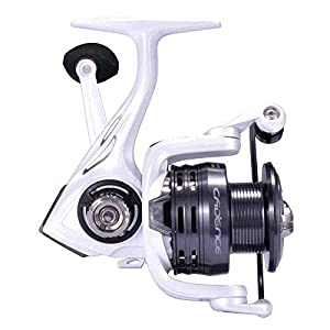 CS4 Spinning Reel,Cadence Ultralight & Fast Speed Carbon Frame Fishing Reel with 8 Low Torque Bearings Super Smooth Powerful Fishing Reel Spinning with 16 Lb Carbon Fiber Drag & 6.2:1 Gear Ratio Reel