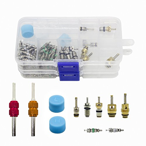 DEDC 108Pcs A/C R134A/R12 Valve Cores Kit, Universal Air Conditioning Valve Core Set with Remover Tool Valve Cap in Two Box