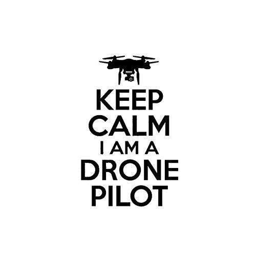 Wiedergeburt Aufkleber Auto 10.4cm * 16cm Keep Calm I AM A DROHNE Pilot UAV Personality-Auto-Aufkleber Vinyl Aufkleber Schwarz/Silber (Color Name : Black)