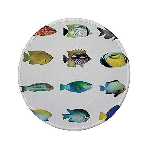 Rutschfreies Gummi-Rundmaus-Pad, Ocean Animal Decor, ägyptischer Fisch mit Bannerfisch Goldfisch Papageienfisch Wild Nature Rotes Meer-Thema, Multi, 7.9