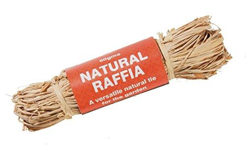 Raffia - Natural - 50g W0574