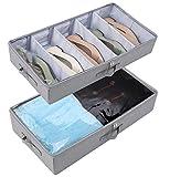 Amonsen Juego de 2 cestas plegables rígidas de almacenamiento para zapatos con tapa transparente y tableros divisores,...