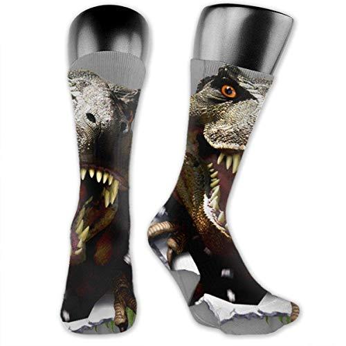 Nice-Guy 3d Dinosaurier bedruckte Crew Socken Bunte Unisex-Adult Socken