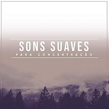 """"""" Sons Suaves Para Concentração """""""