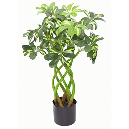 Leaf 70cm Artificielle Twisted Stem Moderne Arboricola Artificiel Bush Plante en Noir Pot