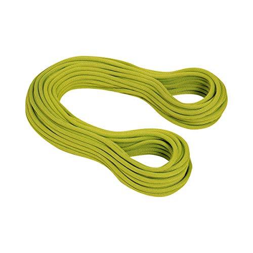 Mammut 9.5 Infinity Dry Seil, pappel-Limegreen, 30 m
