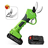 Seesii Professional Cordless Electric Pruning Shears,2Pcs 2Ah Backup Rechargeable Lithium Battery Powered Tree Branch Pruner,30mm (1.2 Inch) Cutting Diameter,with Spare Blade