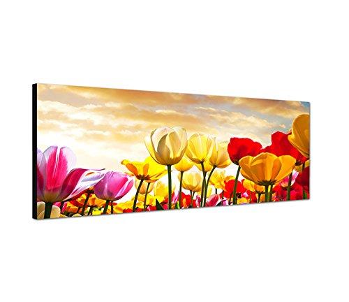 Quadro da parete, stampa su tela con panorama di un campo di tulipani con nuvole al tramonto, 150 x 50 cm