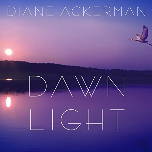 Dawn Light audiobook cover art