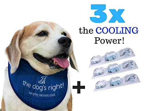 The Dog's Right! Dog Cooling Collar Bandana (Size...