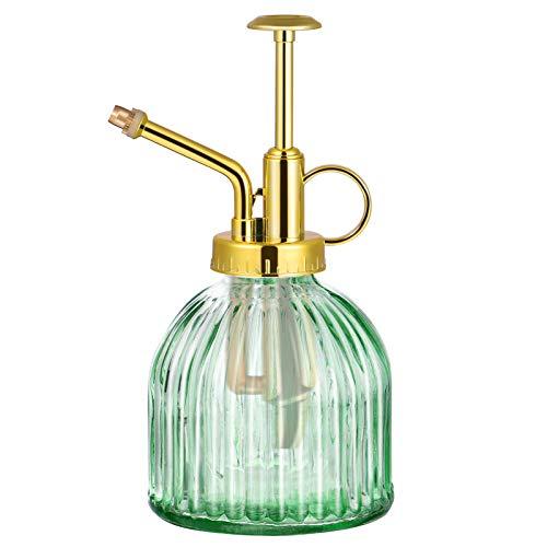 Cabilock Bottiglia di irrigazione spray in vetro trasparente per piante grasse vintage, con pompa di alta qualità, per interni ed esterni