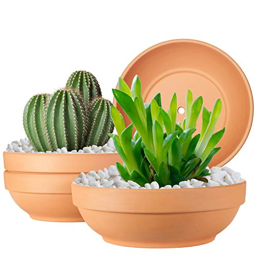 Clay Pots for Plants with Drainage Hole, 4 Pack Large Terra Cotta Plant Pot,...